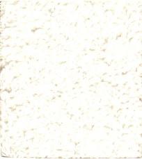 badjasgebrokenwit