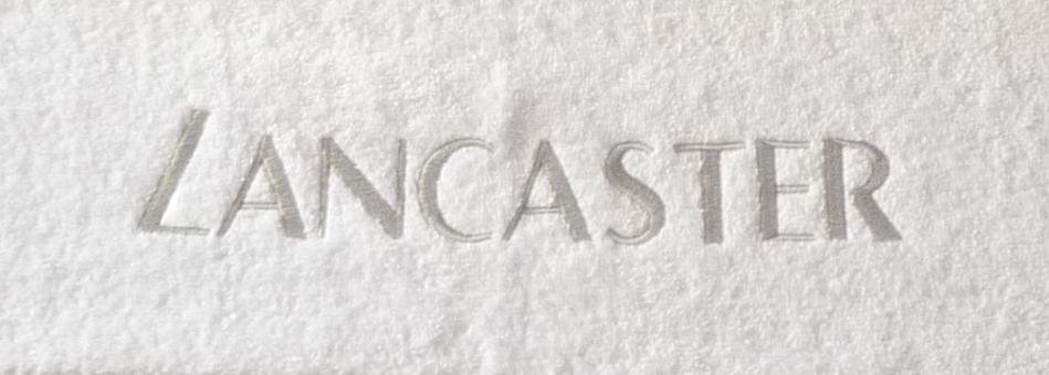 Badhanddoek Met Logo.Geborduurde Handdoeken